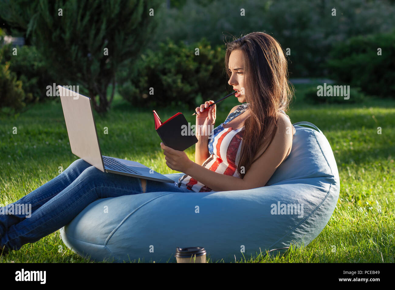 Young cute girl with laptop, sit on bean bag in garden or park, on green grass. Modern lifestyle concept - Stock Image