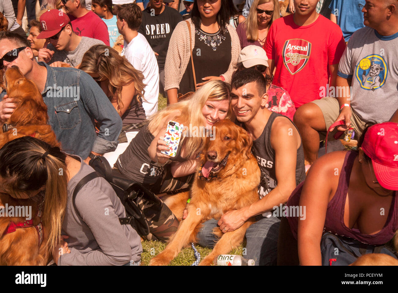Multiracial Golden Retriever dog owners snap a selfie as they pose with their pets for a group photo in a Huntington Beach, CA, park during a dog festival.  (Photo by Spencer Grant) - Stock Image