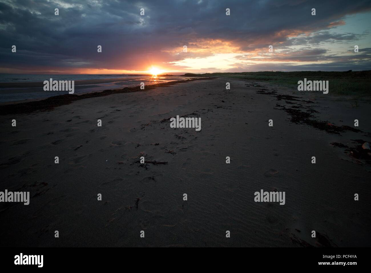 A view looking down a sandy beach with the sun setting. The sun sets on a long sandy beach with sea weed and footprints on the sand. - Stock Image
