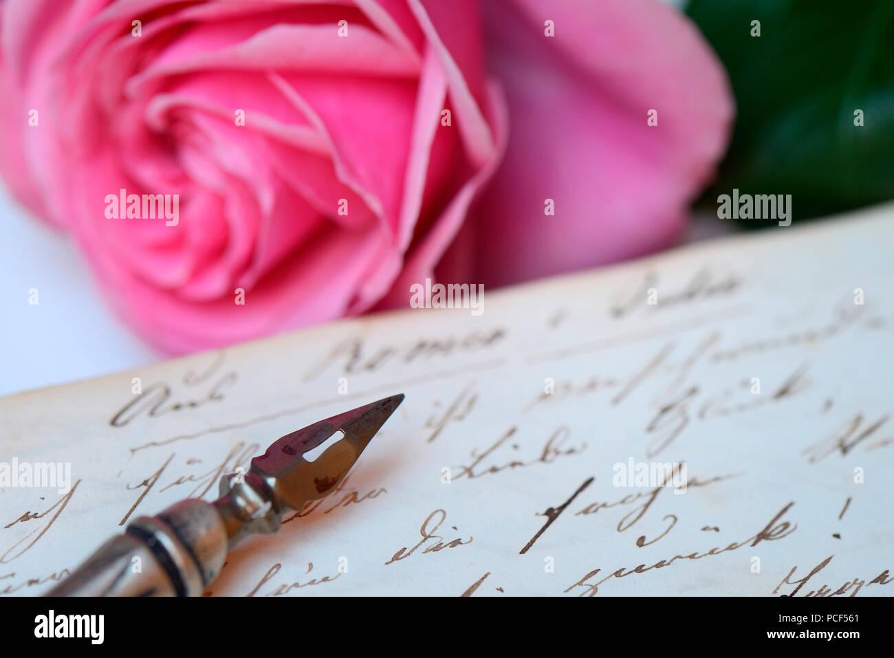 Federhalter mit Schreibfeder auf Buch mit alter Handschrift - Stock Image