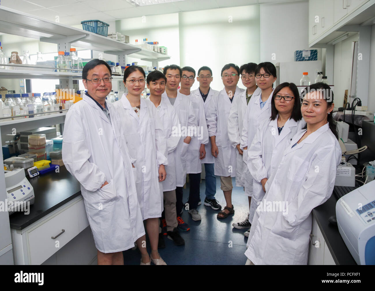 (180802) -- SHANGHAI, Aug. 2, 2018 (Xinhua) -- Qin Zhongjun,  a molecular biologist, and his team and students pose for photo at the Center for Excellence in Molecular Plant Sciences, Shanghai Institute of Plant Physiology and Ecology, of Chinese Academy of Sciences in Shanghai, east China, July 31, 2018. Brewer's yeast, one-third of whose genome is said to share ancestry with a human's, has 16 chromosomes. However, Chinese scientists have managed to fit nearly all its genetic material into just one chromosome while not affecting the majority of its functions, according to a paper released Thu - Stock Image