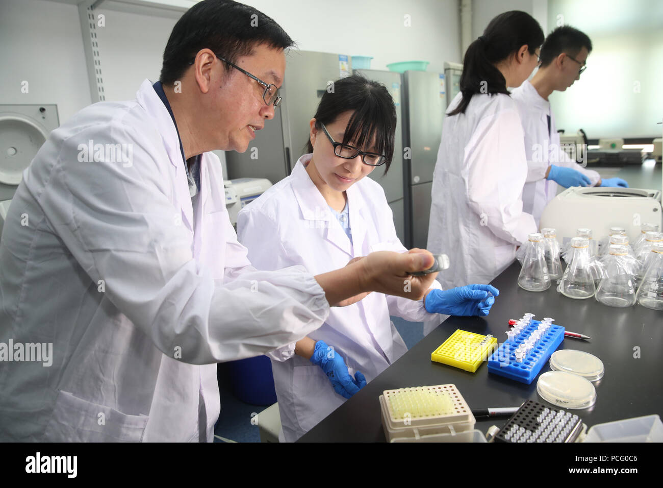 (180802) -- SHANGHAI, Aug. 2, 2018 (Xinhua) -- Qin Zhongjun (L), a molecular biologist at the Center for Excellence in Molecular Plant Sciences of the Shanghai Institute of Plant Physiology and Ecology under the Chinese Academy of Sciences, discusses with his team member in Shanghai, east China, July 31, 2018. Brewer's yeast, one-third of whose genome is said to share ancestry with humans, has 16 chromosomes. However, Chinese scientists have managed to fit nearly all its genetic material into just one chromosome while not affecting the majority of its functions, according to a paper released T - Stock Image