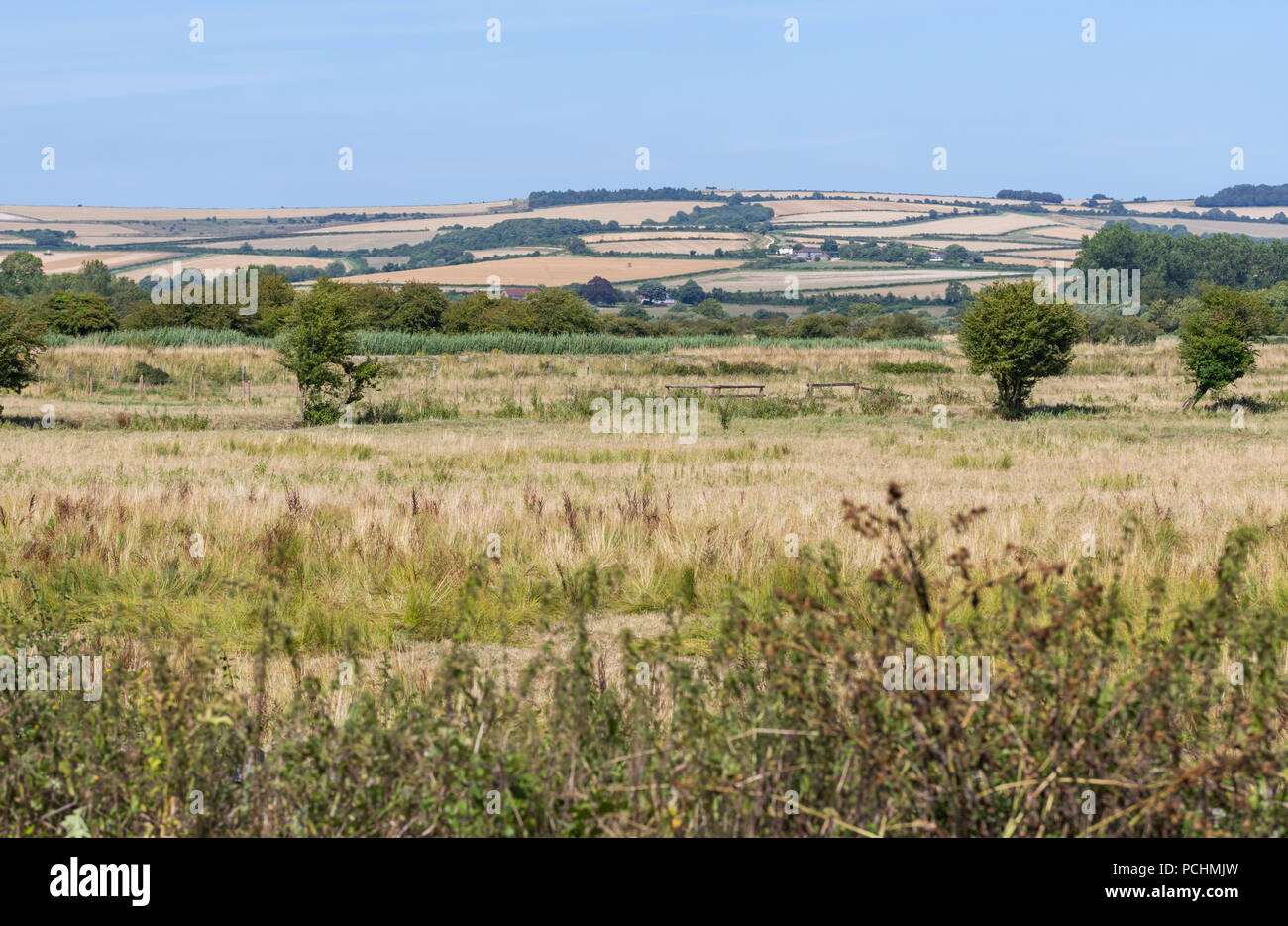 Hills & fields of the South Downs in the South of England in the July 2018 Summer heatwave, showing brown grass due to lack of rain in West Sussex, UK. - Stock Image