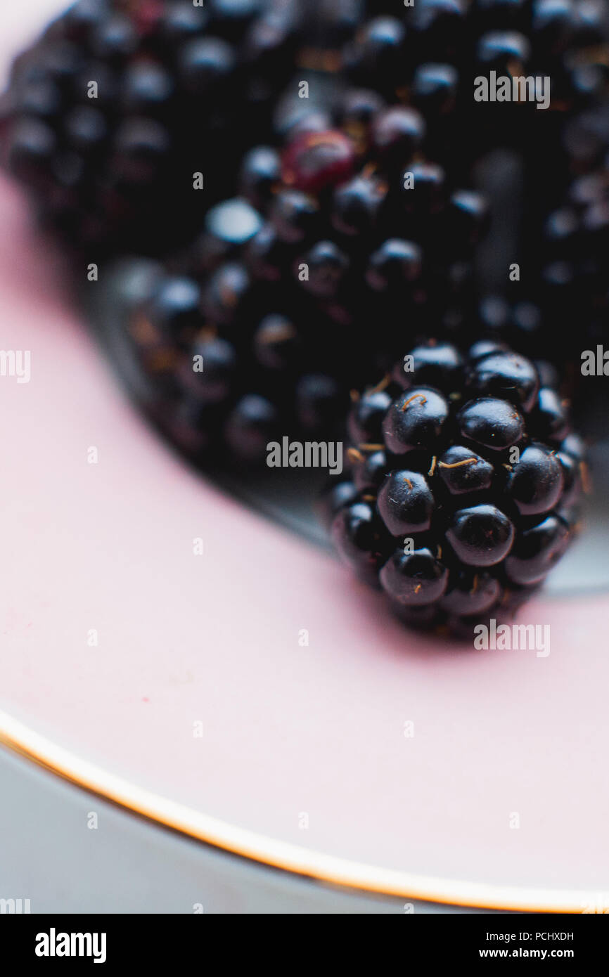 Many late summer (autumn) blackberries, on a pink plate, ripe and ready to eat.  Picked (foraged) locally Stock Photo
