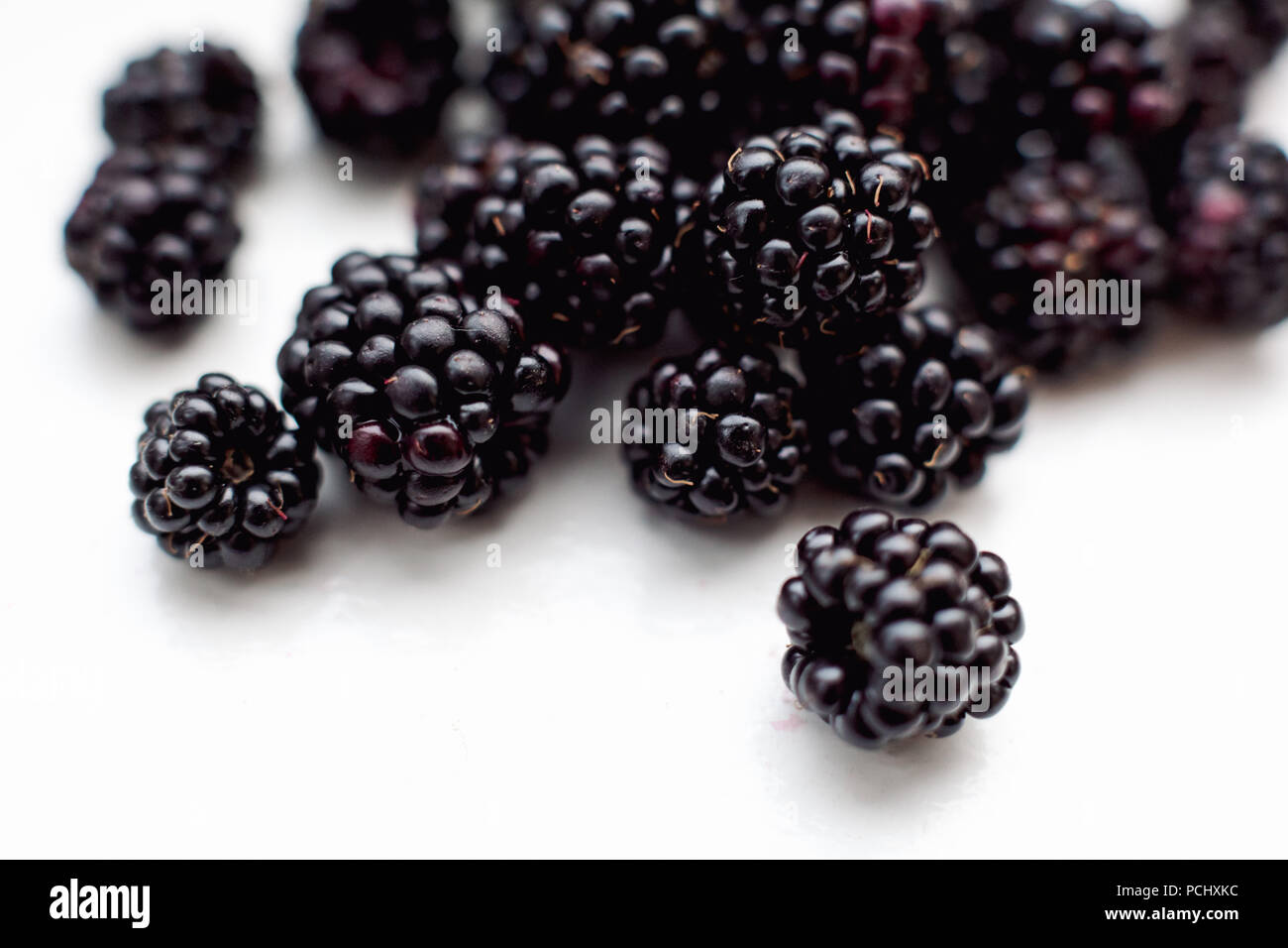 Lots of blackberries on a white background - Stock Image