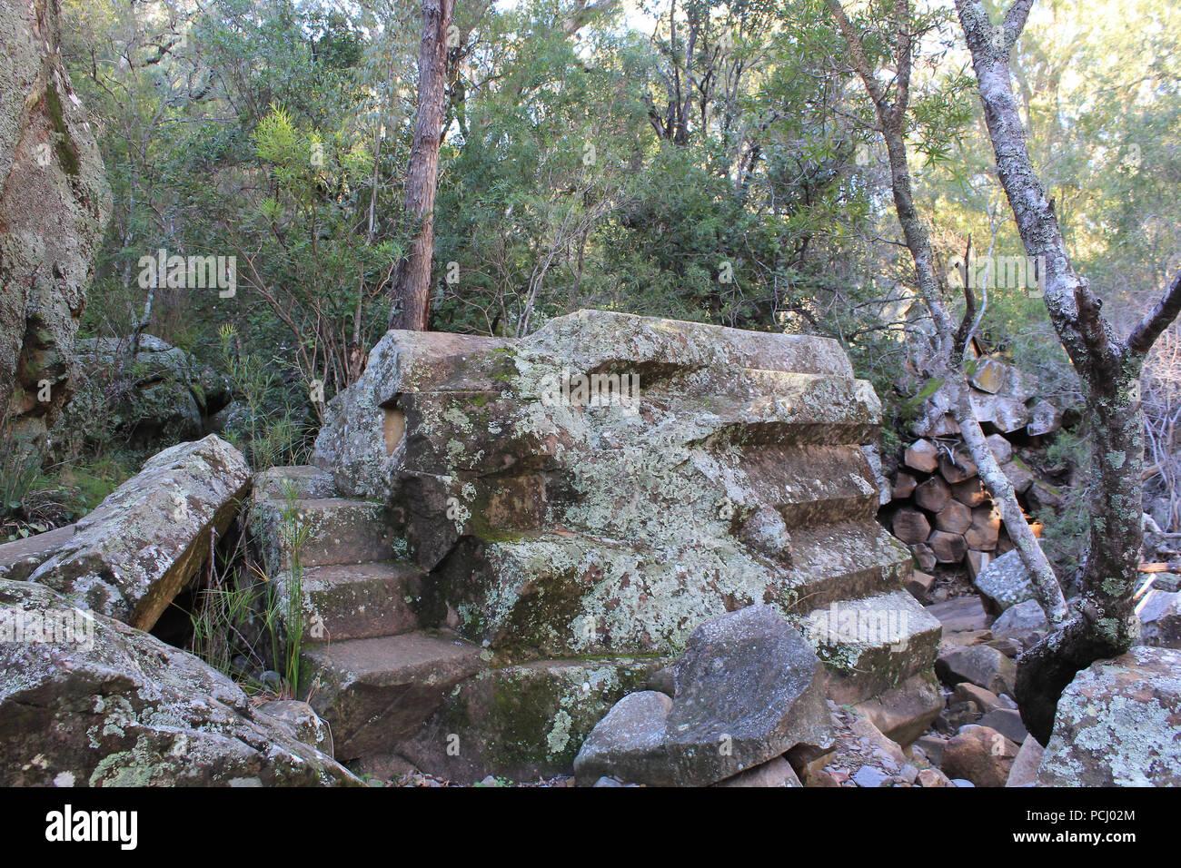 The ancient volcanic rock has formed a rock formation known as 'organ-piping' at Sawn Rocks, Mt Kaputar National Park, Narrabri, NSW, Australia. - Stock Image