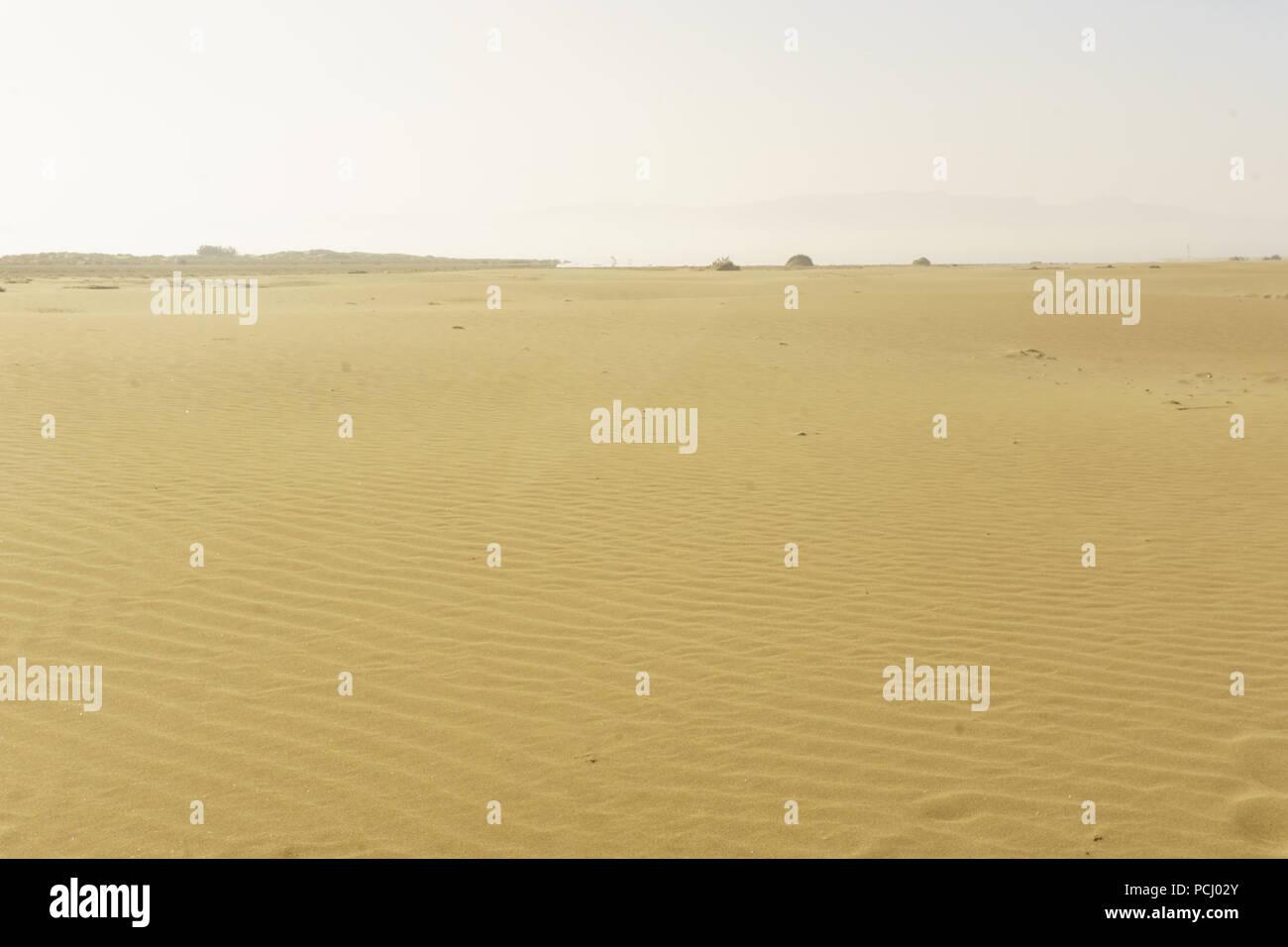 sandy desert before reaching the beach - Stock Image