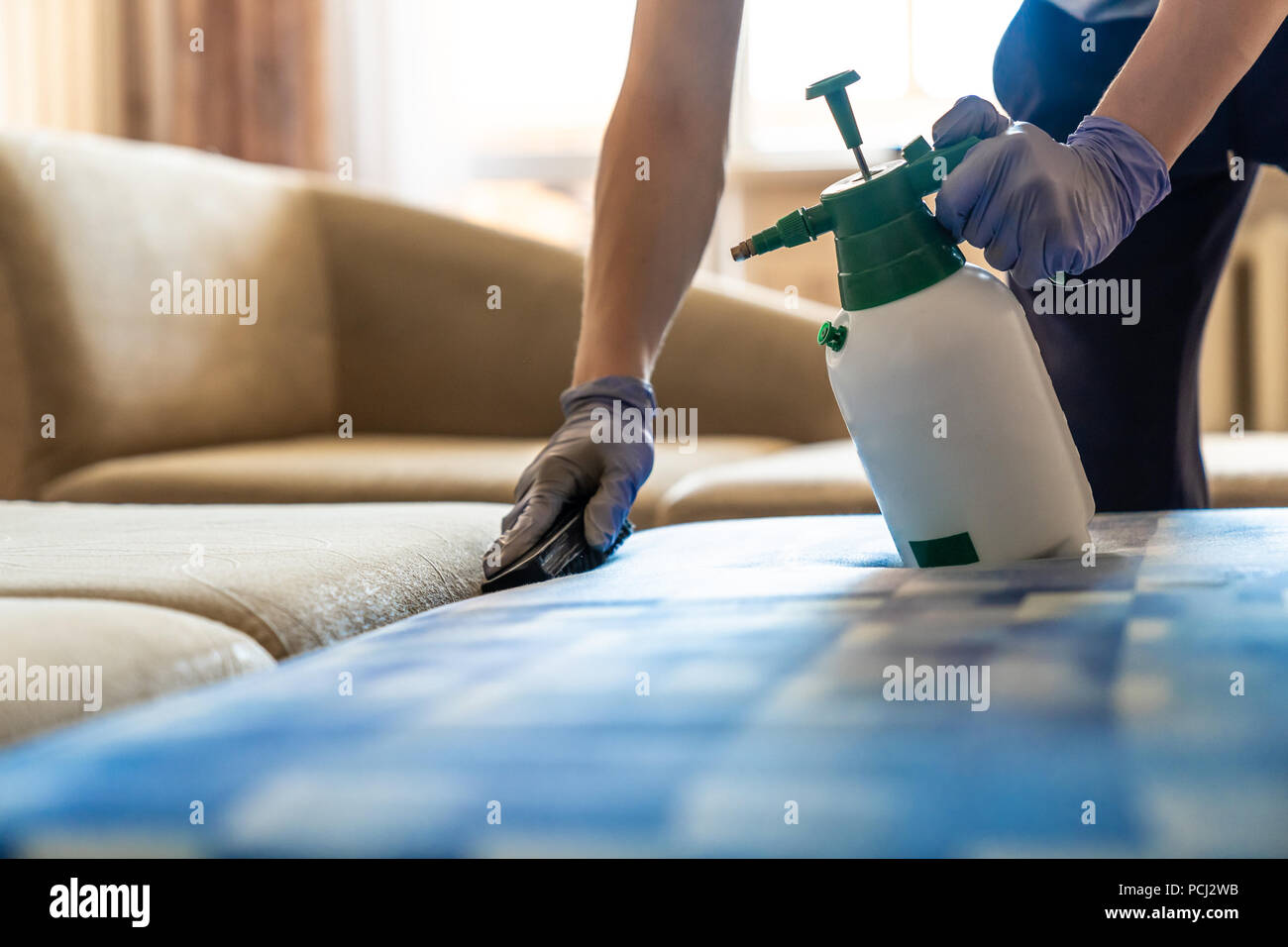 Closeup of upholstered Sofa chemical cleaning - Stock Image