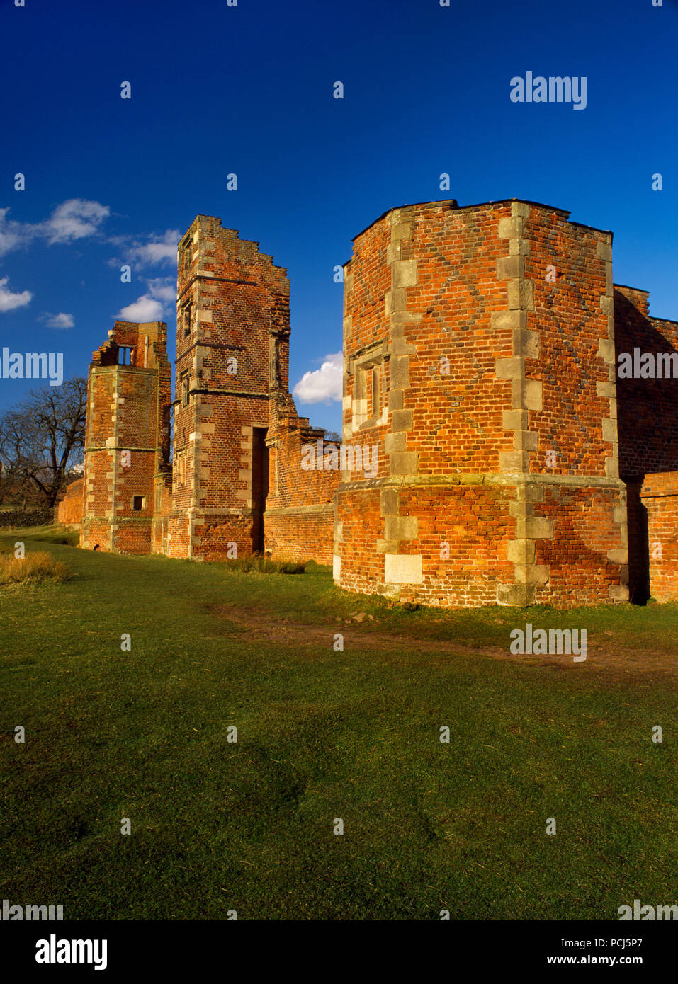 View NNE of Bradgate House, Leicestershire, UK, childhood home of Lady Jane Grey: 16-year-old uncrowned 'Queen of England' for 9 days 10-19 July 1553. - Stock Image