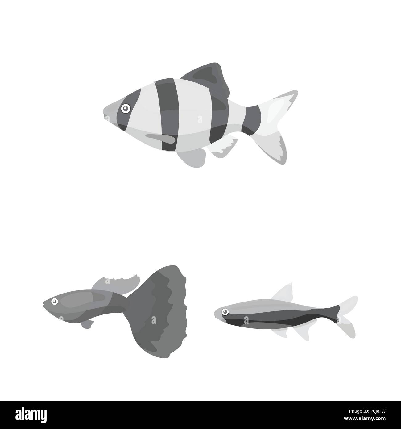 Different Types Of Fish Monochrome Icons In Set Collection For