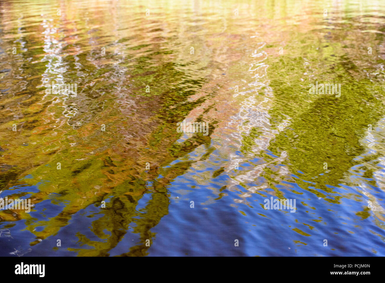 Spring reflections in Elbow Lake, Wanup, Ontario, Canada - Stock Image