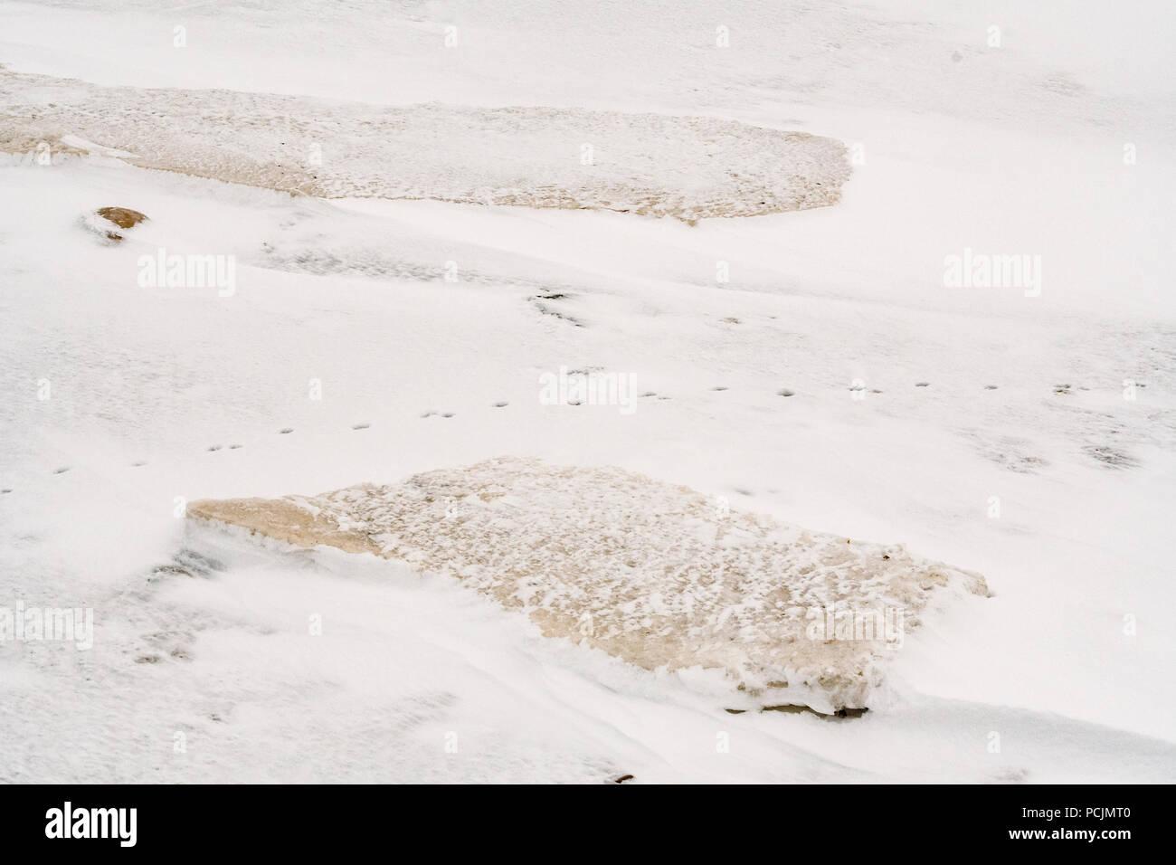 Hudson Bay coastline at freeze-up, Wapusk National Park, Cape Churchill, Manitoba, Canada - Stock Image