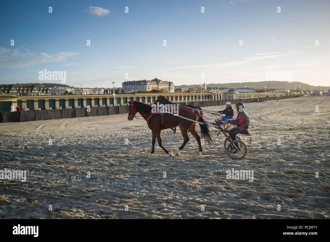 Exercising racehorses in harnesses with two-wheeled carts or sulky on the beach at Deauville, Normandy, France - Stock Image