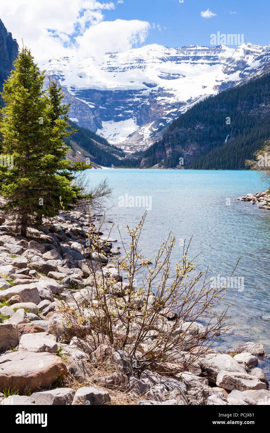 Lake Louise in the Rocky Mountains, Alberta, Canada - Stock Image