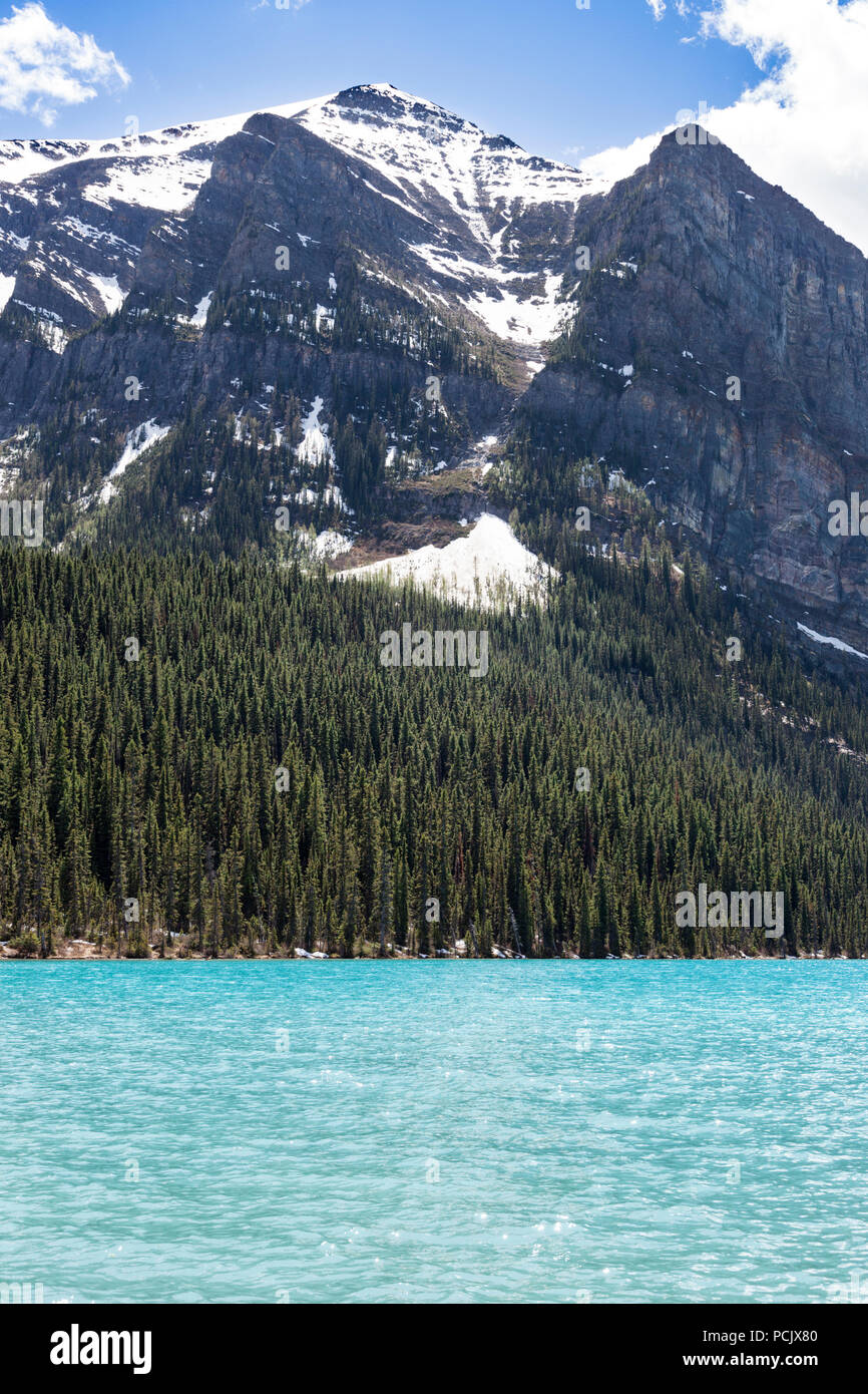Coniferous woodland on the shore of Lake Louise in the Rocky Mountains, Alberta, Canada Stock Photo