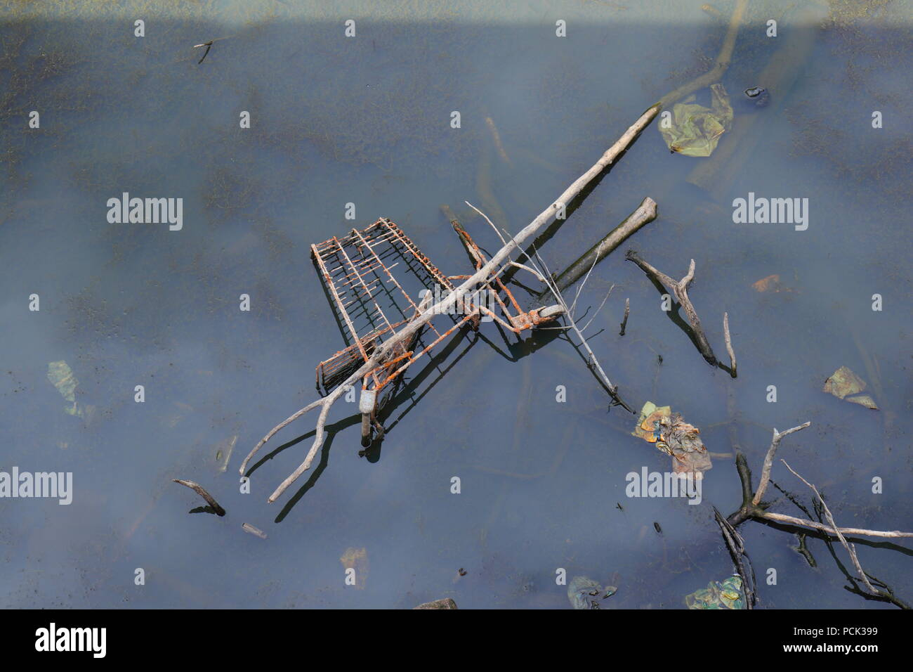 A  shopping trolley lays rusting away in a pond - Stock Image
