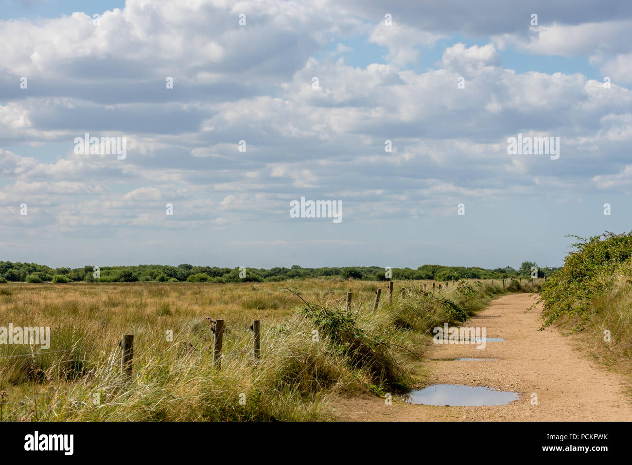 Norfolk landscape of heathland, big sky with fluffy clouds, and sandy footpath with puddles. - Stock Image