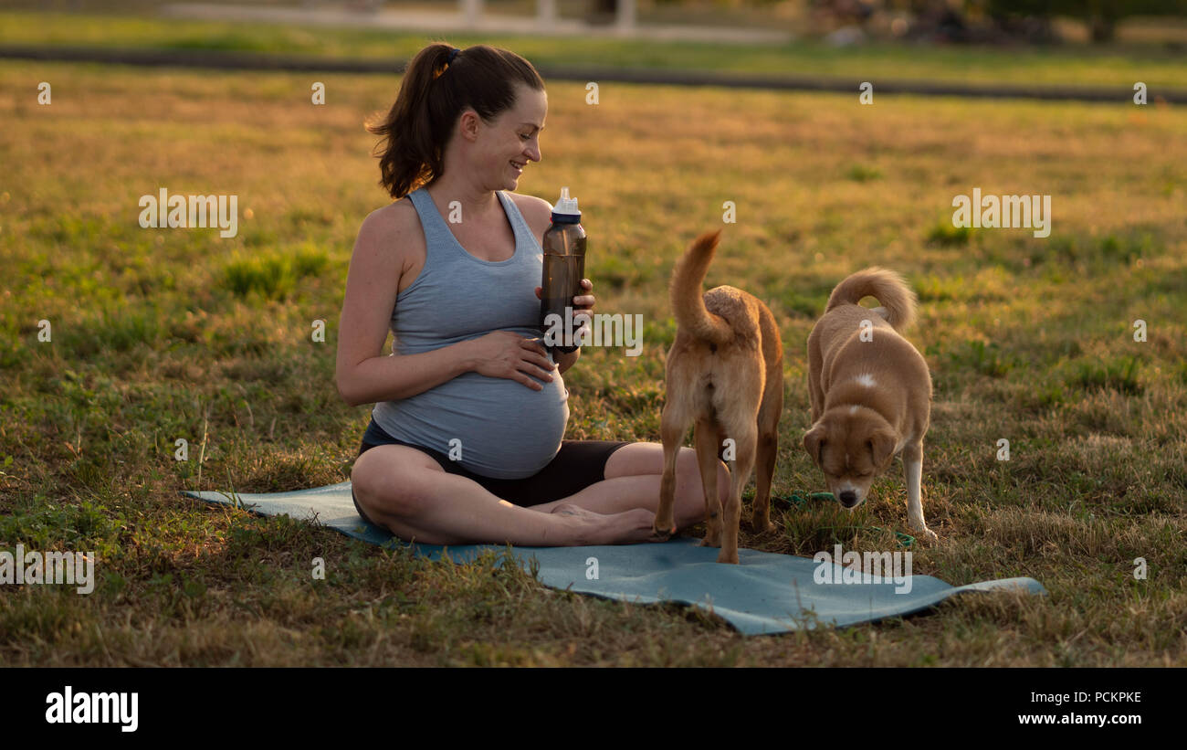 Young healthy pregnant woman with two red dogs doing yoga exercises in nature outdoors on green grass on fitness mat at sunset. Happy pregnancy and motherhood concept - Stock Image