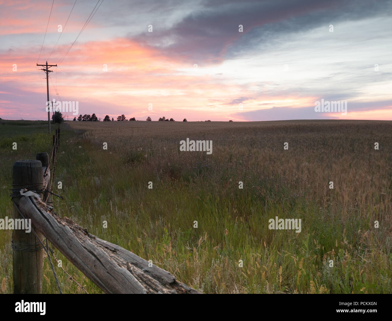 Picturesque fence of poles 73