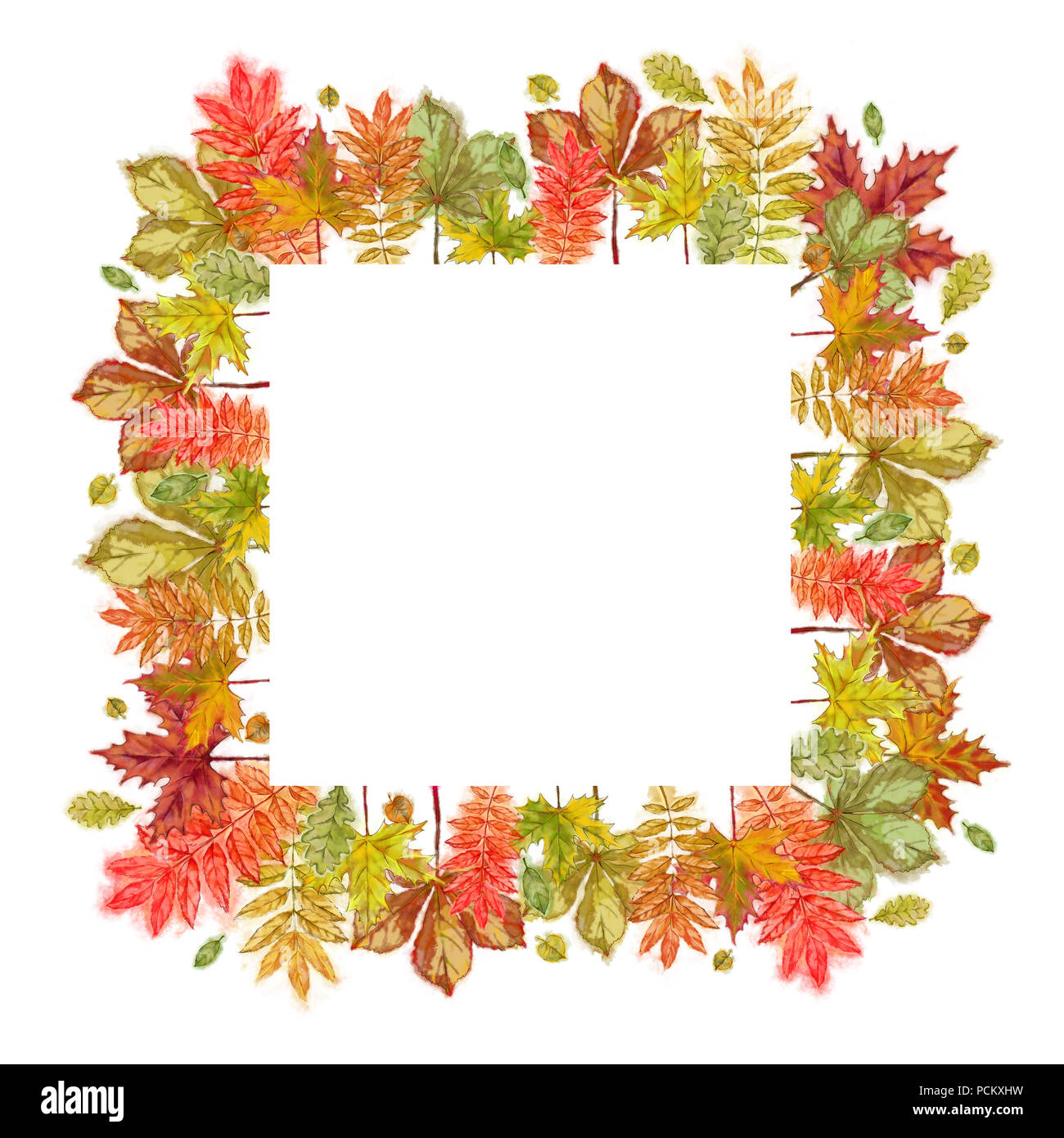 autumnal square template isolated on white autumn leaves border