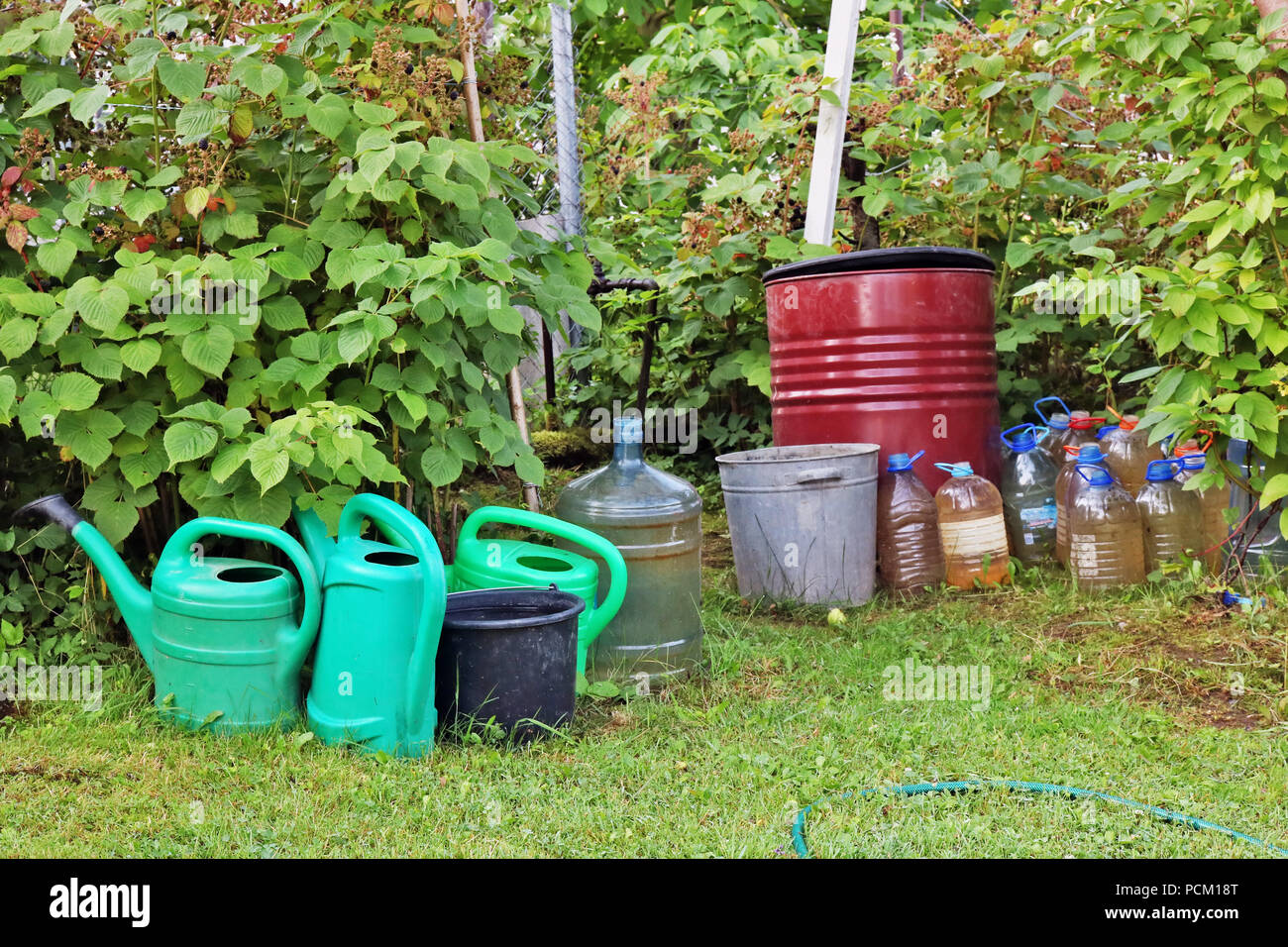 Hot  summer day and the water in buckets and cans in poor european vegetable garden. Thirst concept.  July sunny outdoor concept - Stock Image