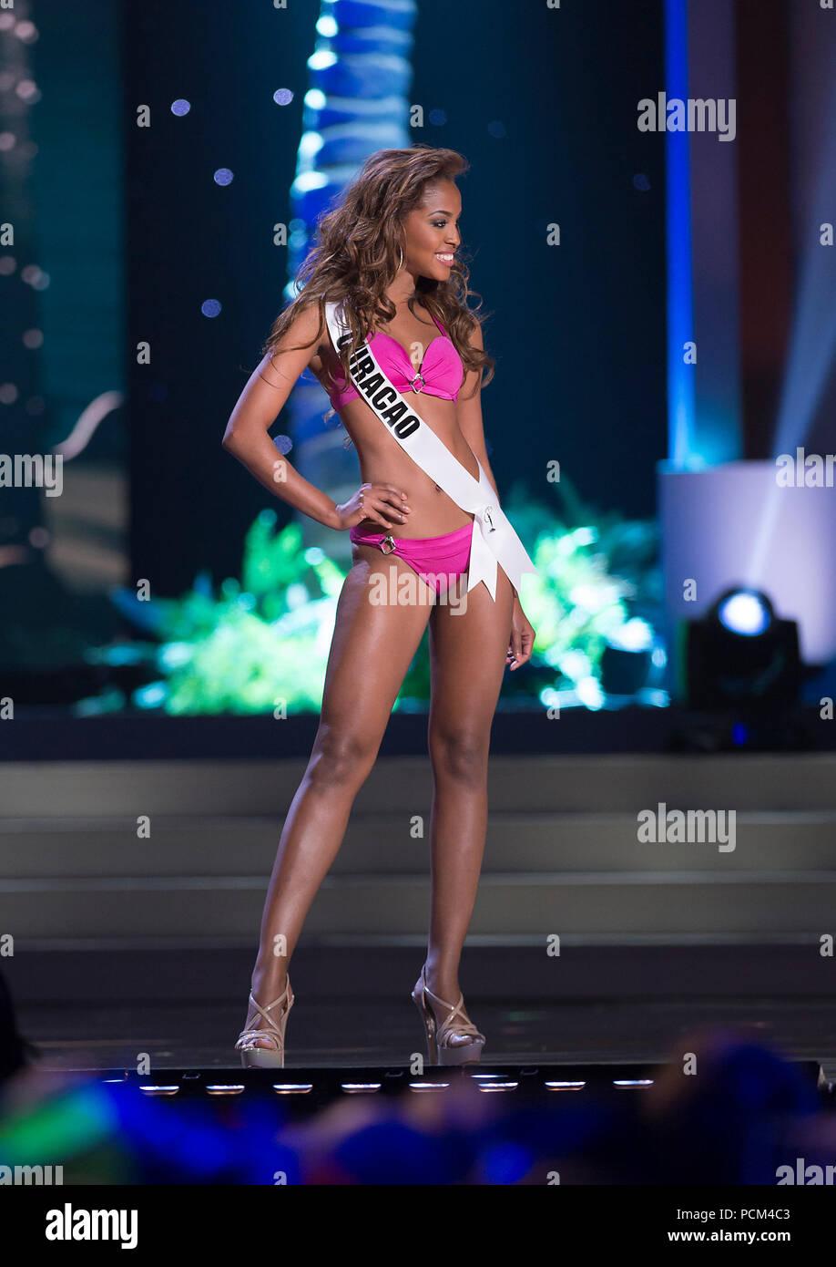 DORAL, FL - JANUARY 21: Miss Curacao Laurien Angelista 2014