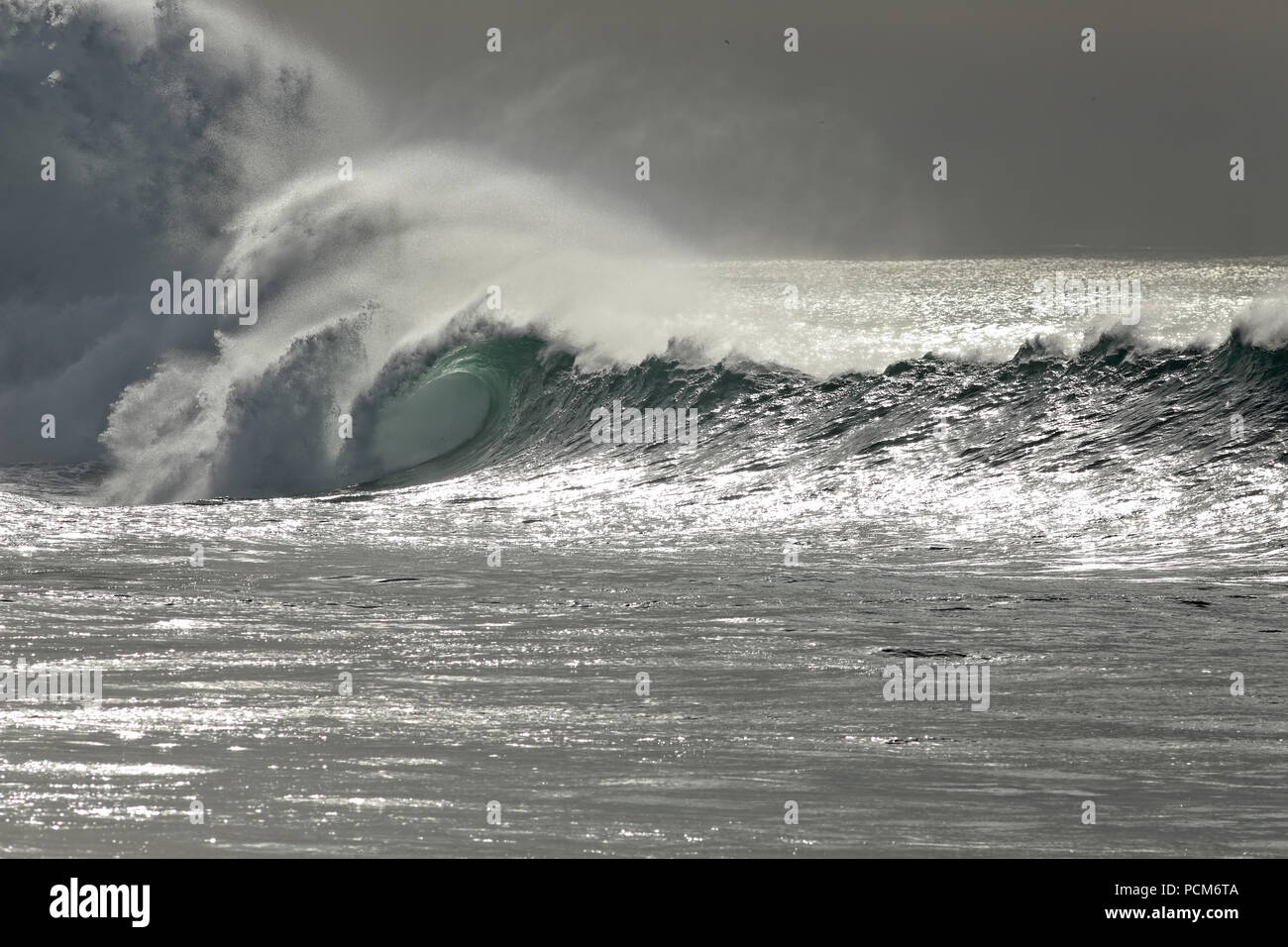 Dark winter seascape with big wave approaching the northern portuguese rocky coast. Soft backlight. - Stock Image