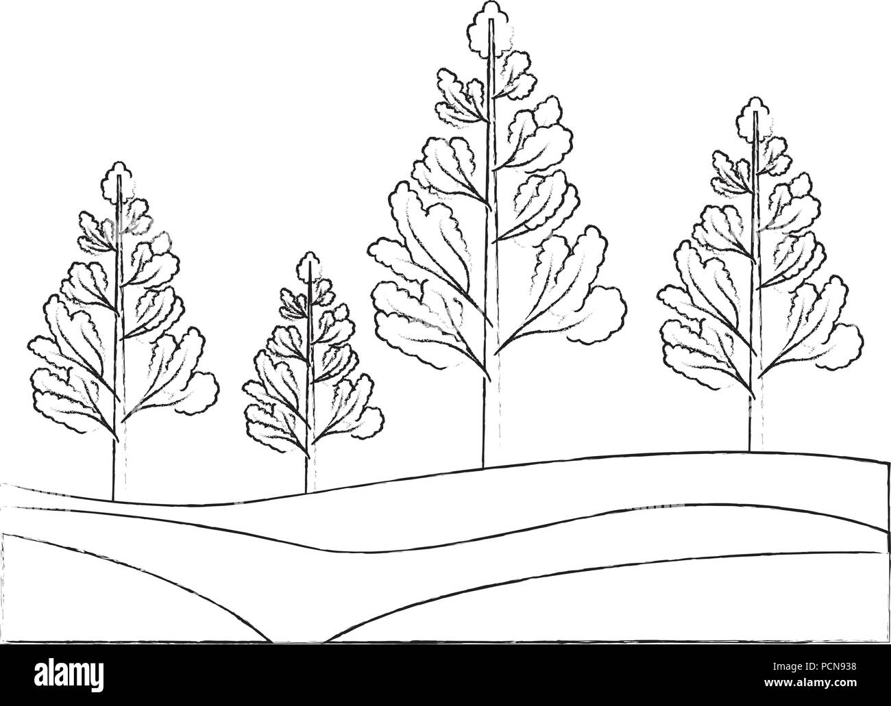 Nature Trees Forest Foliage Botanical Vector Illustration Hand Drawing Stock Vector Image Art Alamy