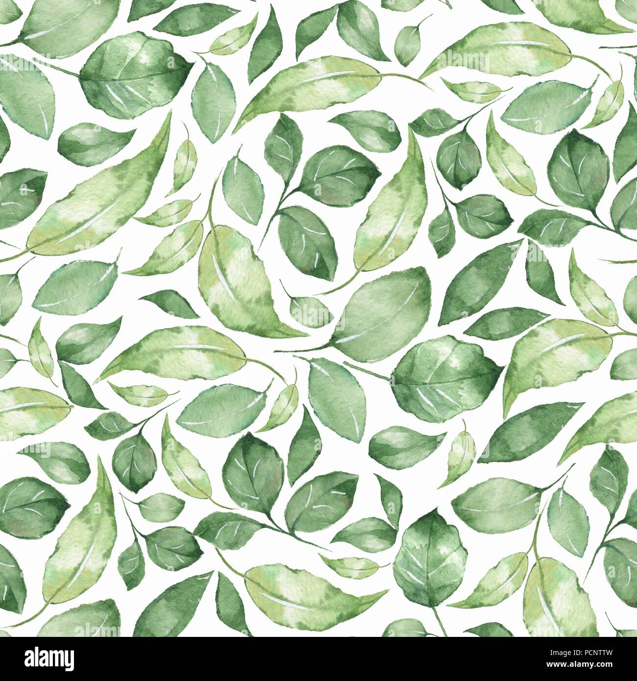 Floral pattern. Seamless background with green watercolor leaves - Stock Image