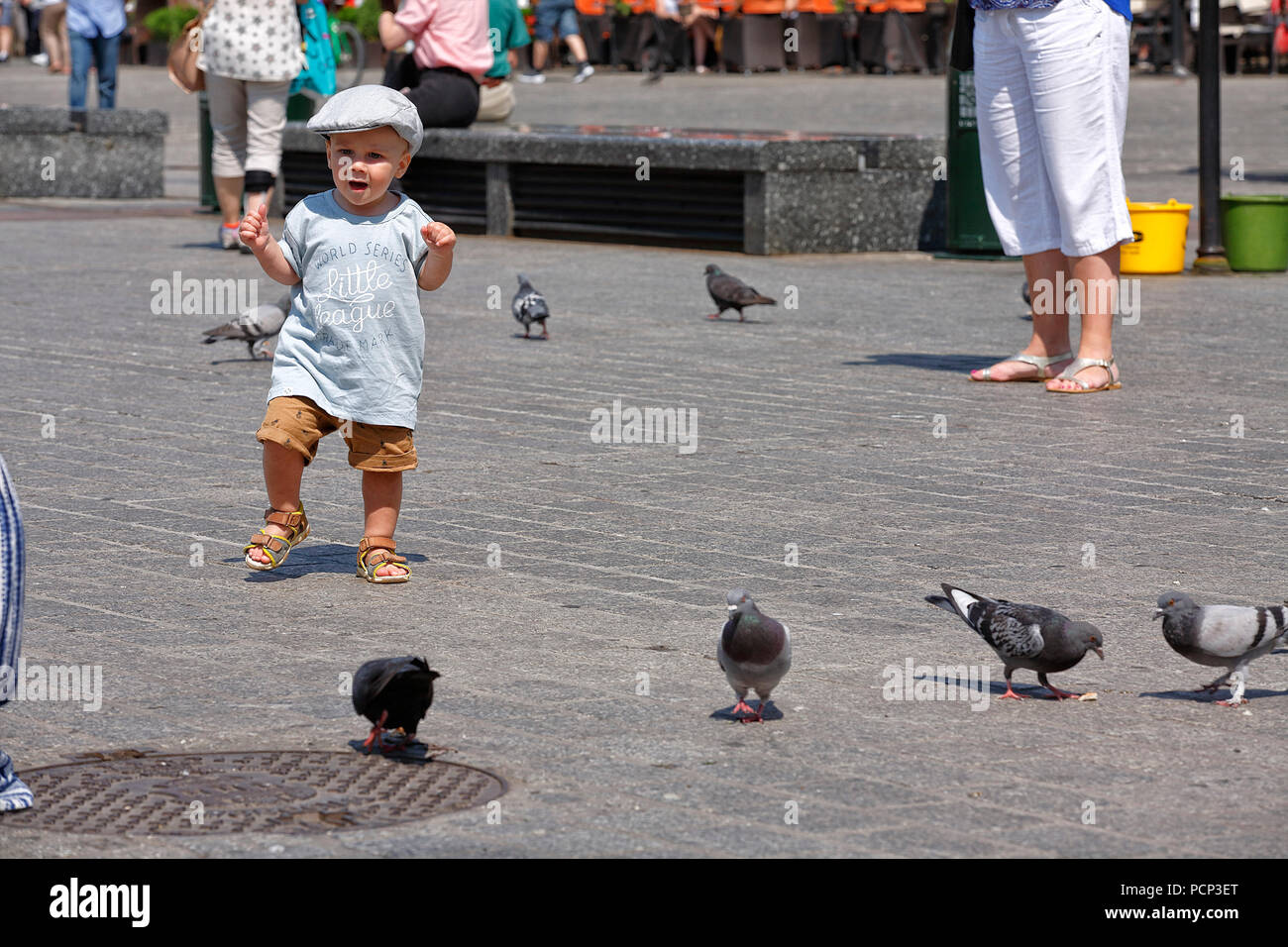 kid standing infront of pigeons in old town krakow, lesser poland, poland, europe - Stock Image