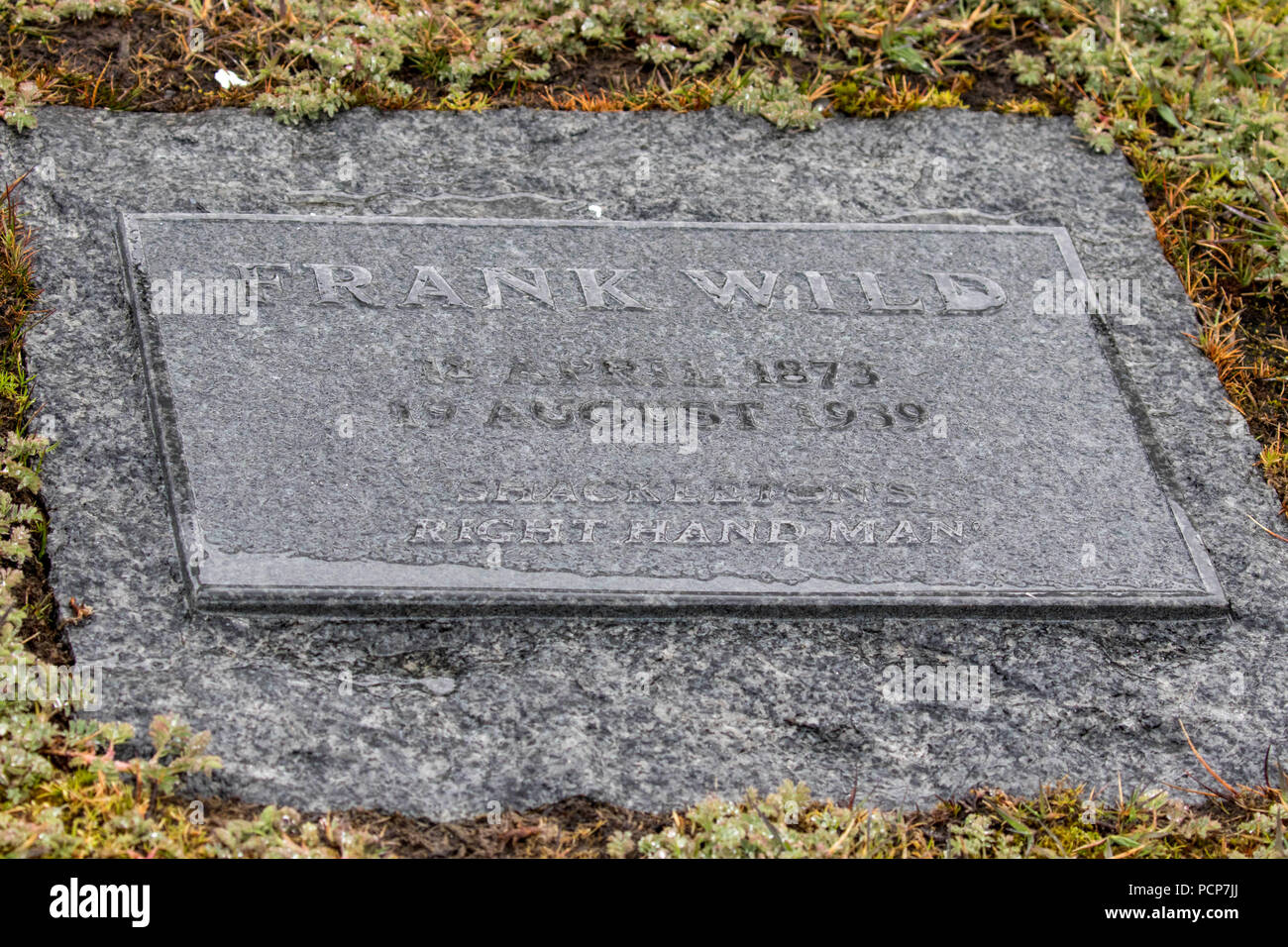 Grave marker on South Georgia for Frank Wild - Stock Image