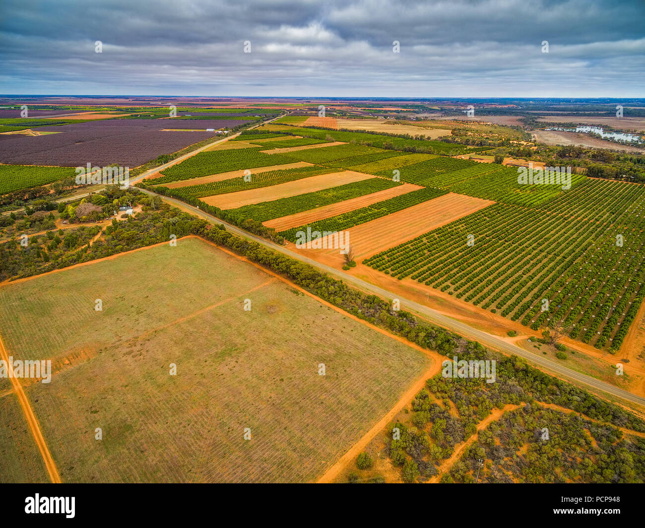 Aerial view of agricultural fields in Murtho, Riverland, Australia - Stock Image