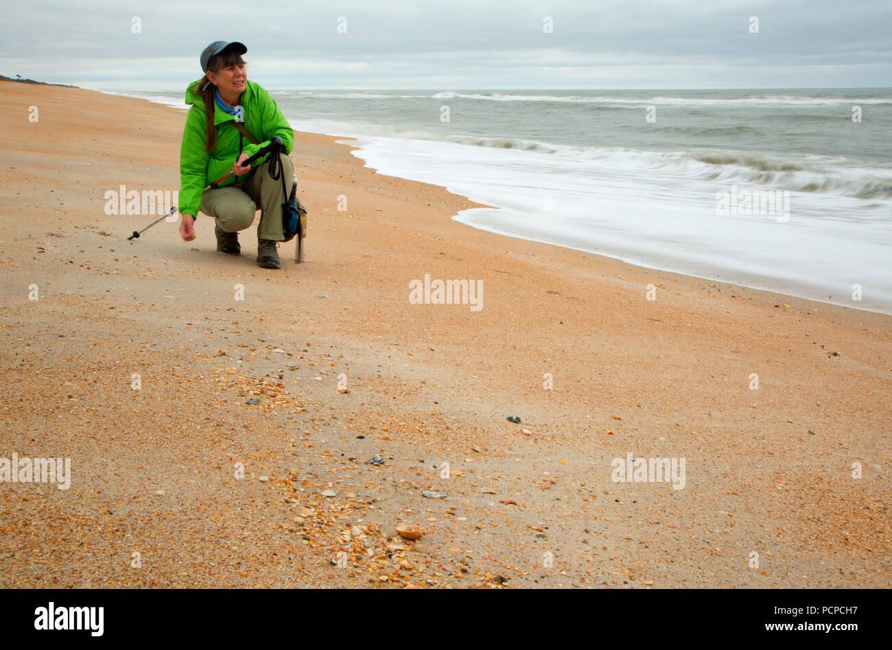 Open beach, Guana Tolomato Matanzas National Estuarine Research Reserve,  Florida - Stock Image