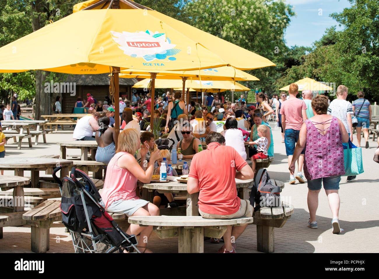 Hilvarenbeel,Holland,30-july-2018:people enjoy their ice cream drinks and food on a terrace during the hot summer ever measured in the Netherlands and the rest of Europe - Stock Image