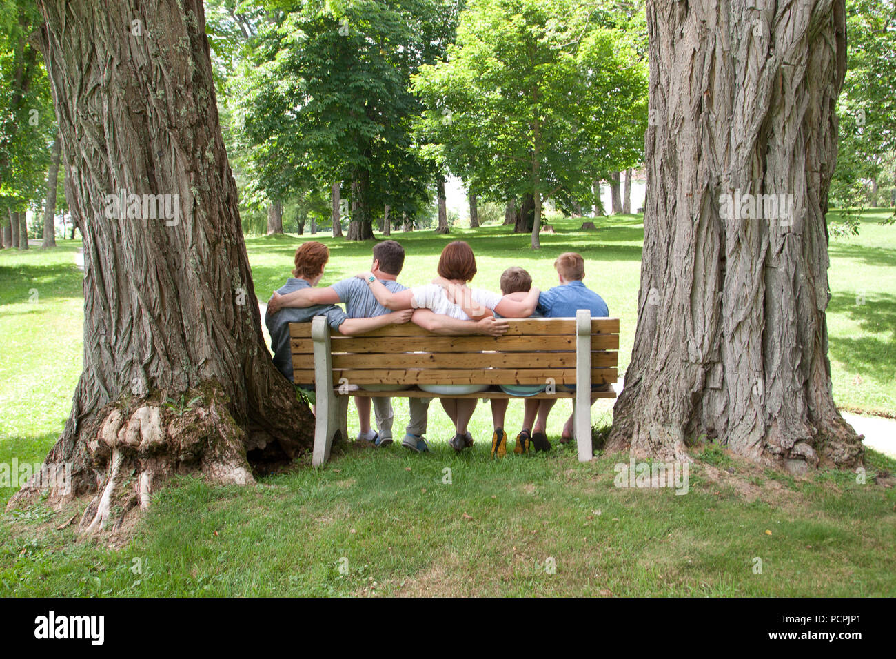 A Lovely Family Of Gingers Sits Together On A Park Bench Viewed From