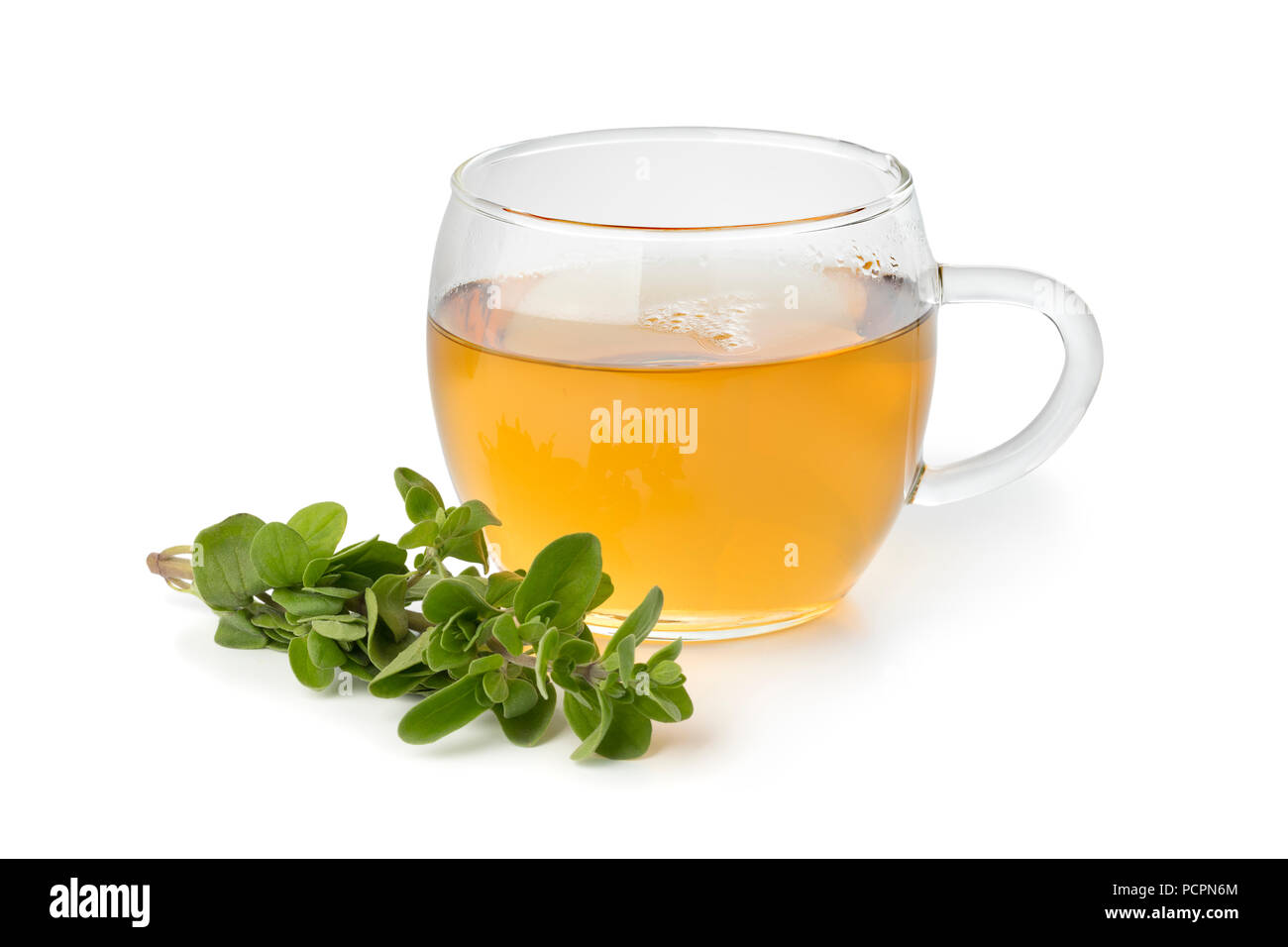 Glass cup of herbal tea and a twig of fresh marjoram isolated on white background - Stock Image