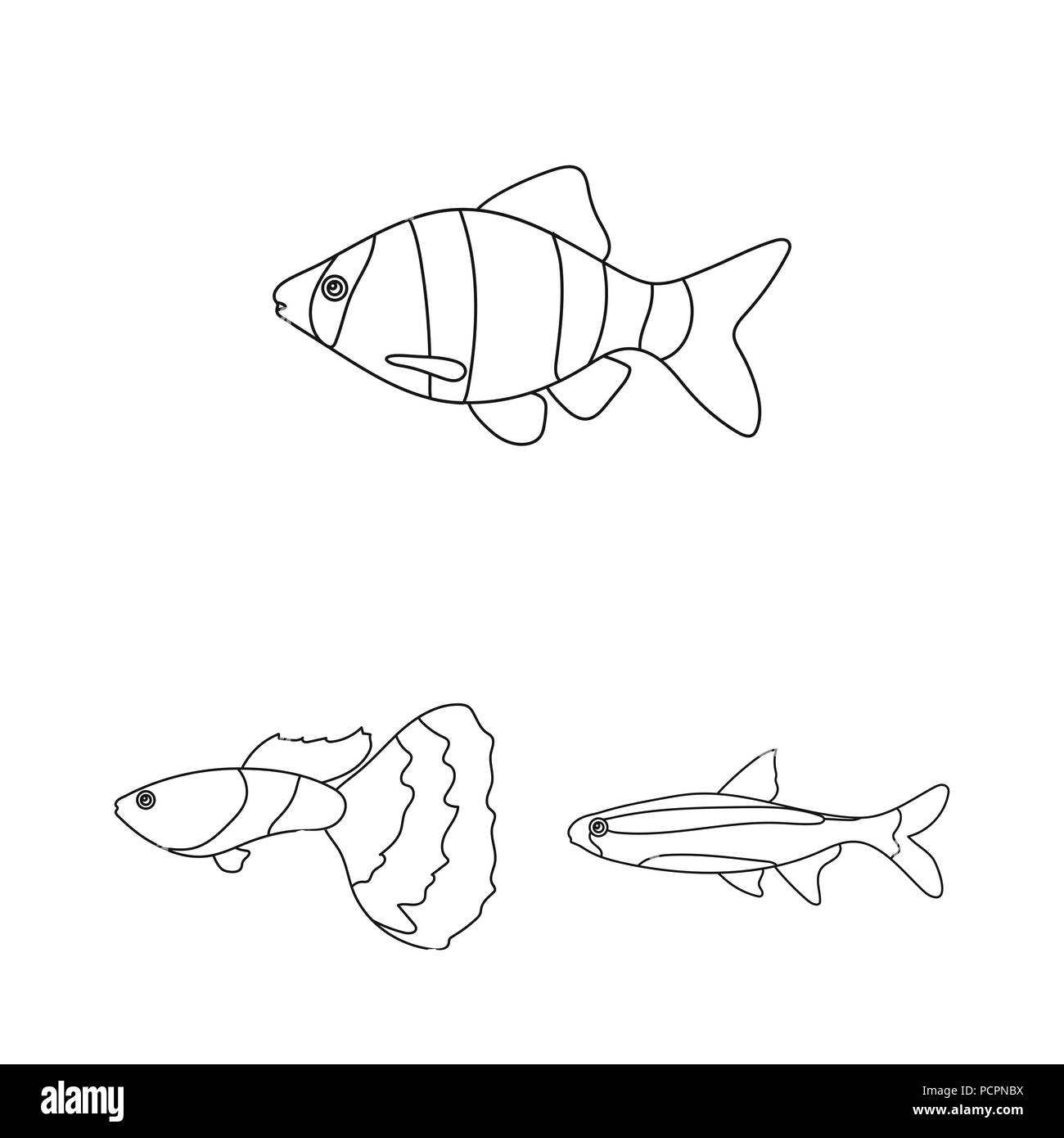 Different Types Of Fish Outline Icons In Set Collection For Design