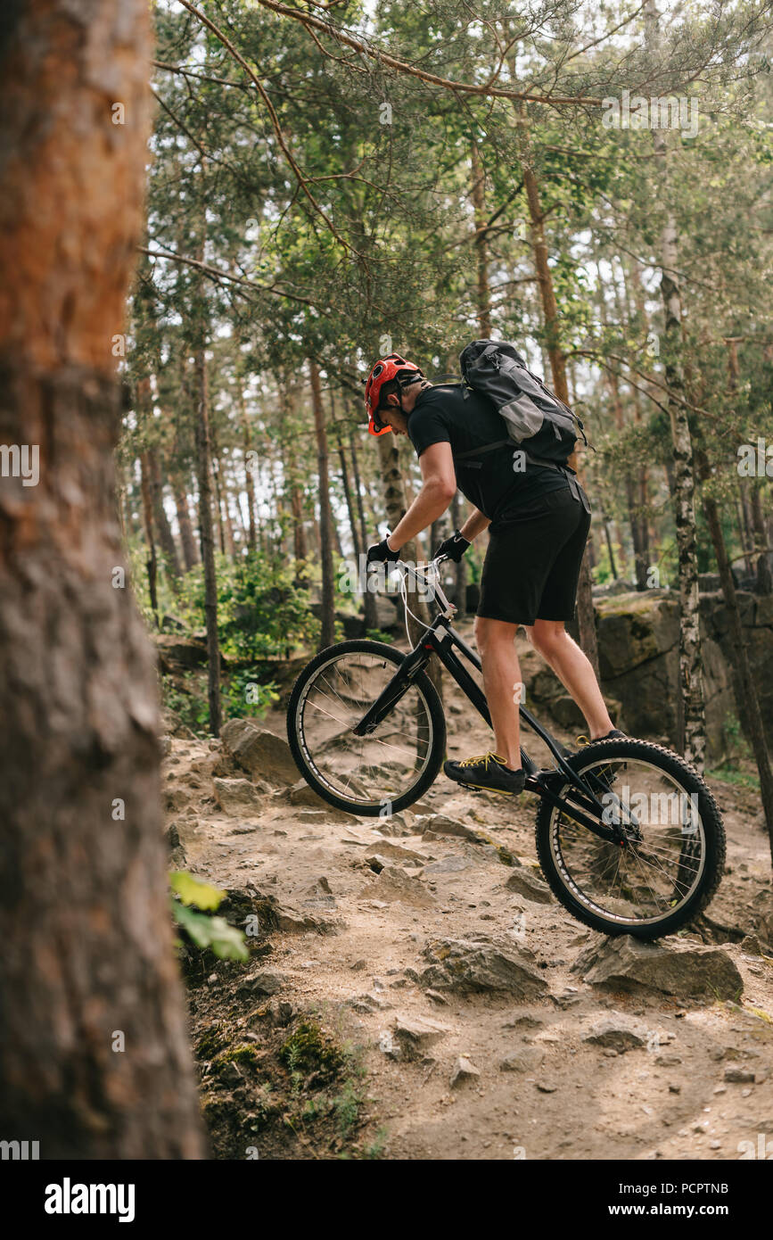 athletic young trial biker riding at pine forest - Stock Image