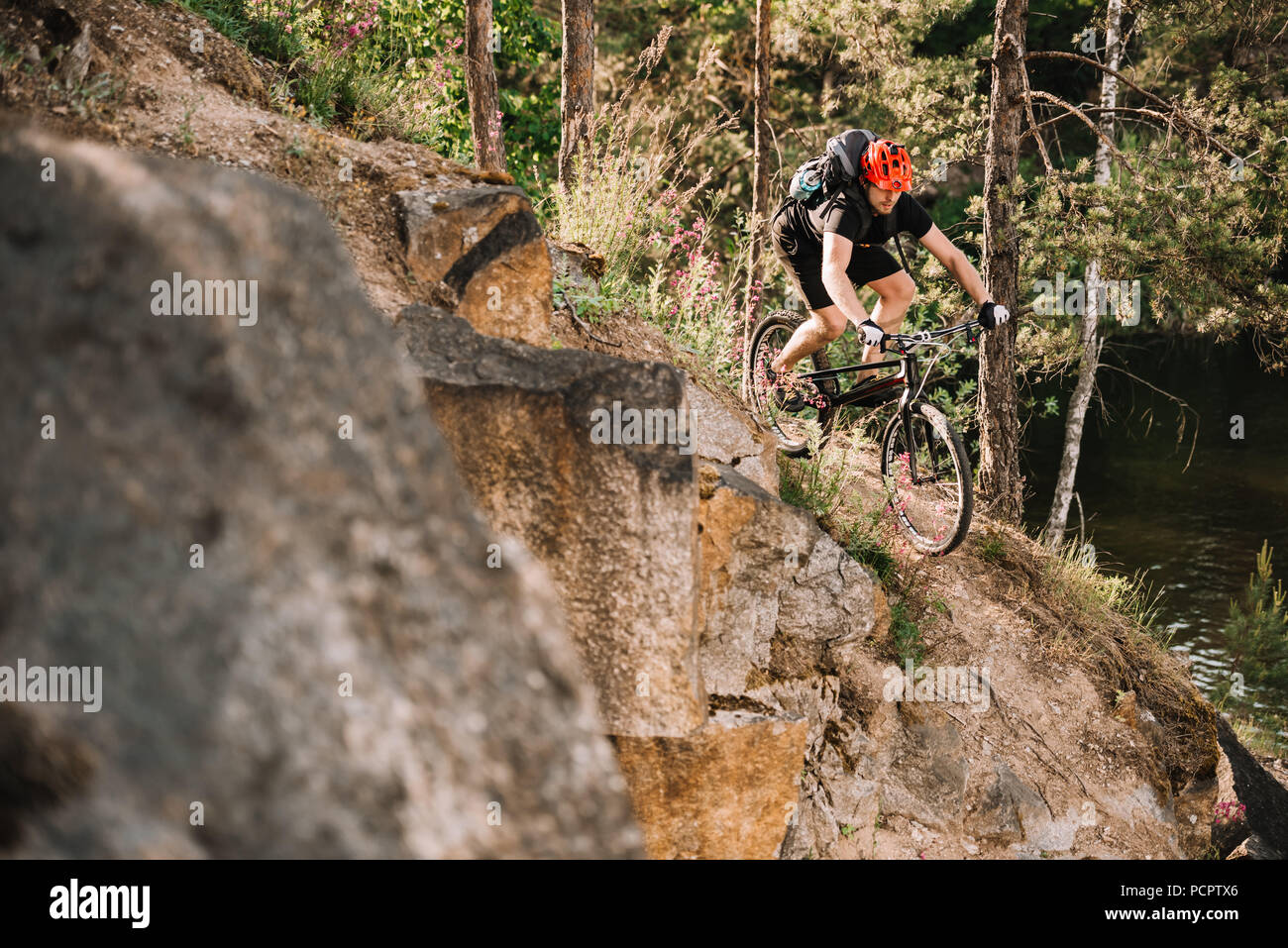 young trial biker riding downhill outdoors in pine forest - Stock Image