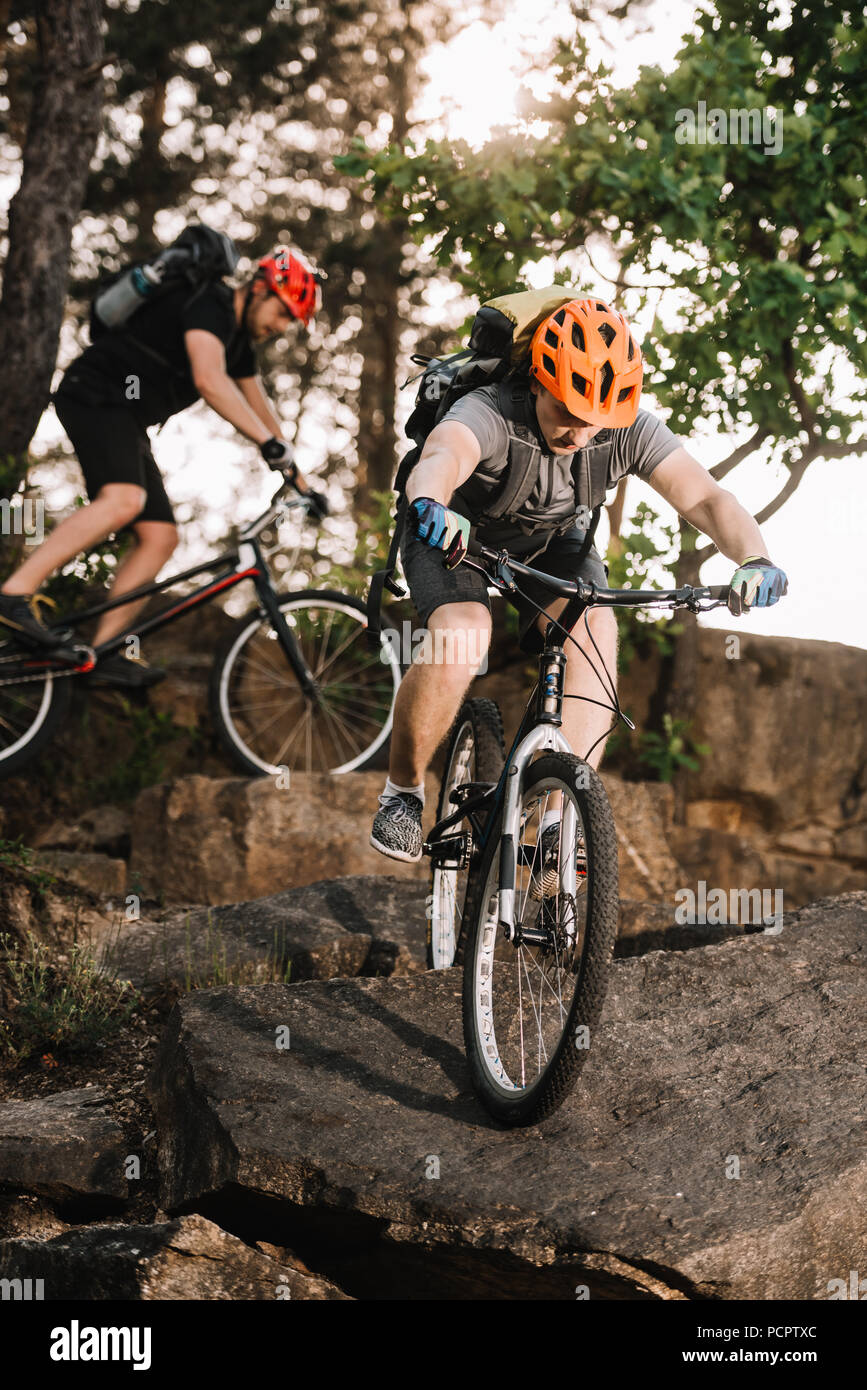 extreme young trial bikers riding on rocks at pine forest - Stock Image