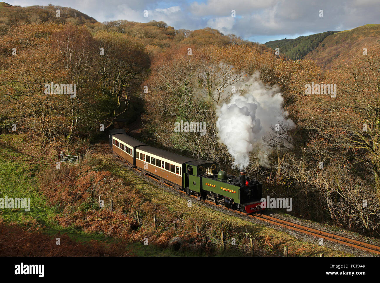No8 approaches Devils Bridge on 10.11.17 on the Vale of Rheidol line. - Stock Image