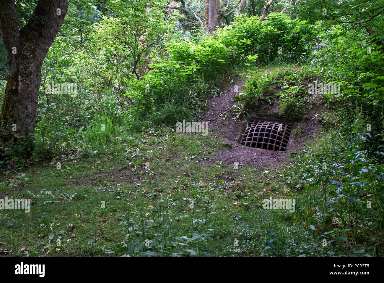 Grill covering the entrance to the ice house at Duff House. Macduff. - Stock Image
