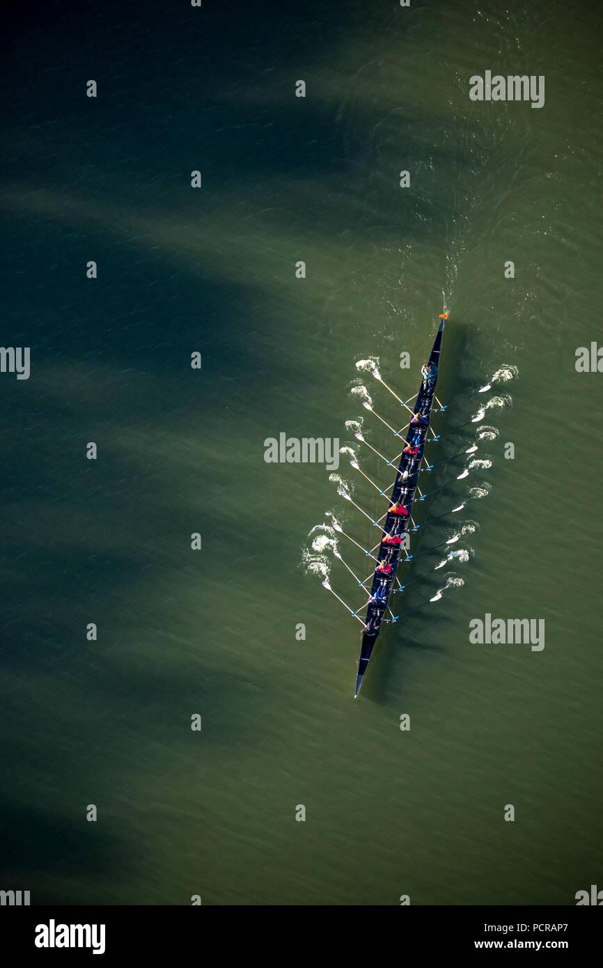 Rowers, coxed eight on the Baldeneysee, Essen, Ruhr area, North Rhine-Westphalia, Germany - Stock Image