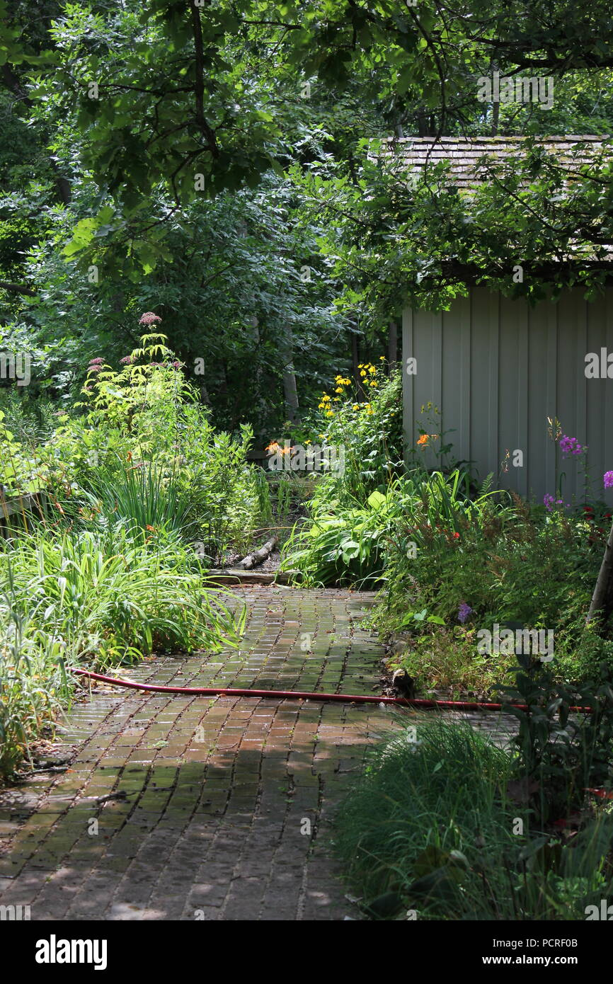 Paved brick walk in the garden at the Kennicott Grove in suburban Glenview, Illinois on a summer day. - Stock Image
