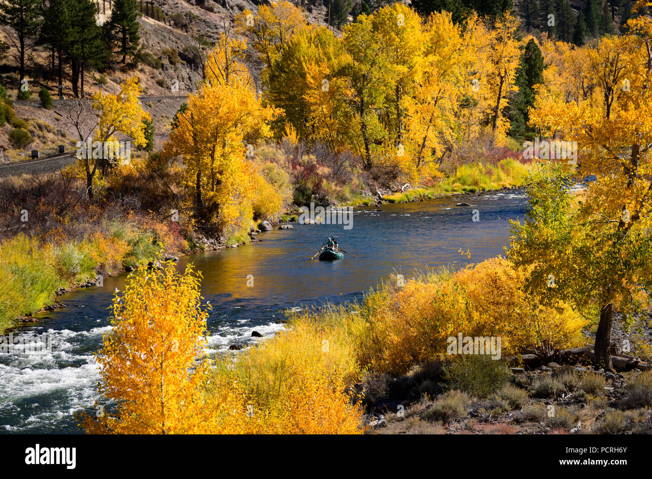 Fishing with Fall color along the Truckee River near Reno, Nevada 2018. - Stock Image