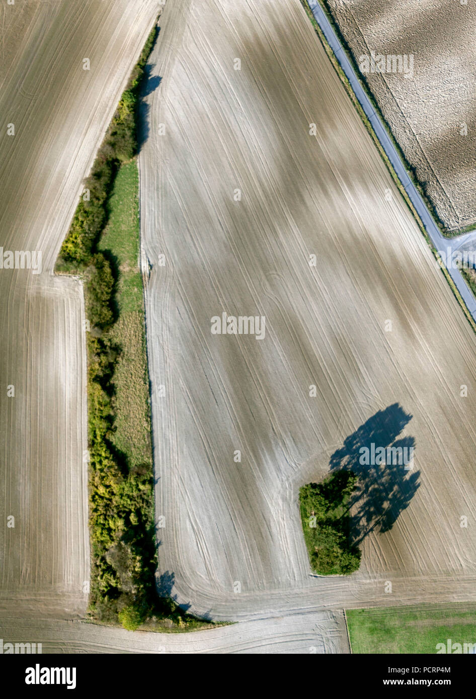 Aerial view, hedgerows in the shape of a one, the photography was reversed, Hamm, Ruhr area, North Rhine-Westphalia, Germany, Europe - Stock Image