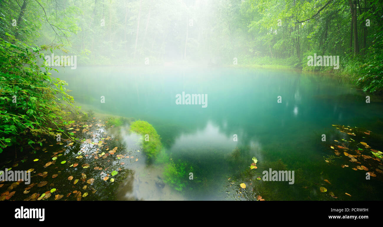 Fog covering the turquoise-coloured souce of the spring of the Rhumequelle, karstic spring, national Geotop, Herzberg, Lower Saxony, Germany - Stock Image
