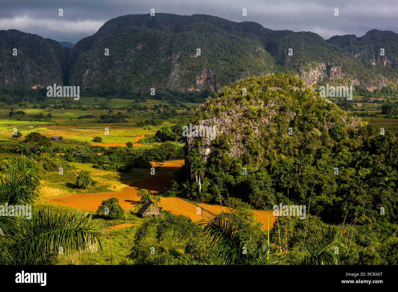 Farmhouse, farmer cottage, barn for drying tobacco leaves, tobacco fields and the mountains of the Mogotes, Viñales Valley with karst mountains, Viñales, Pinar del Río province, Cuba, North America, Cuba - Stock Image