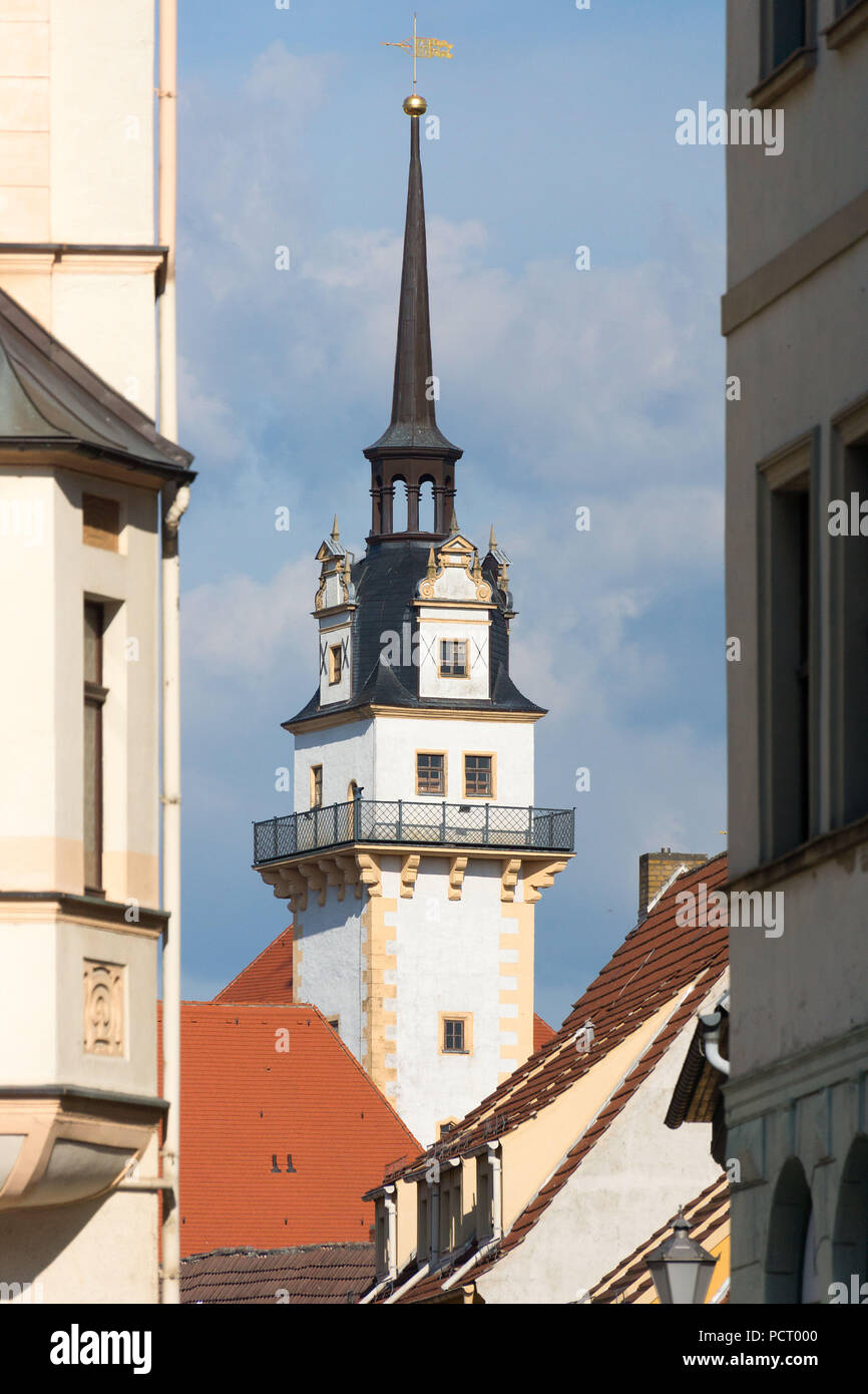 Elbe Cycletour, Saxony, Torgau, Hartenfels Castle Stock Photo