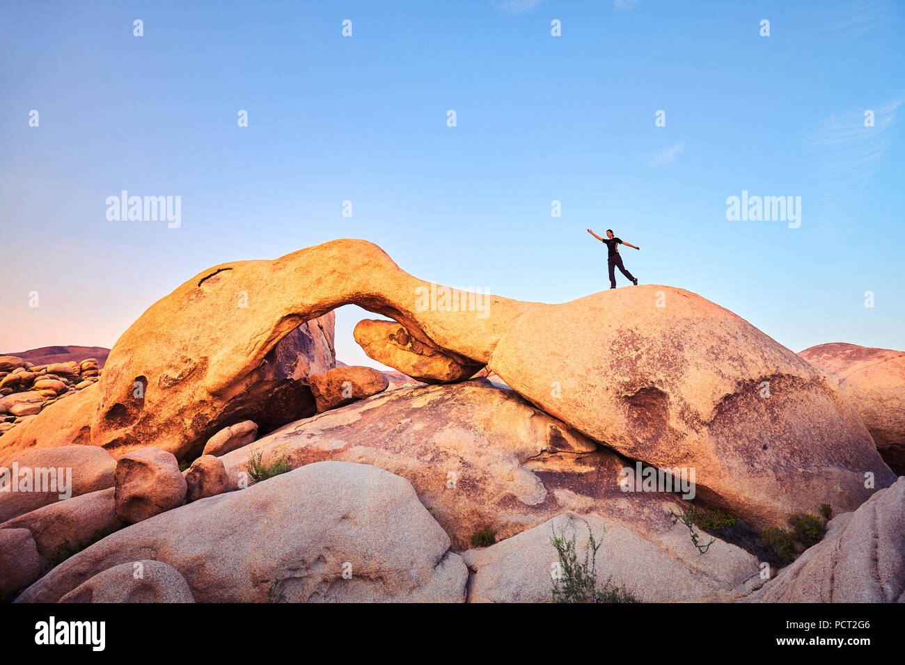 Unique Rock Formations At Joshua Tree National Park With